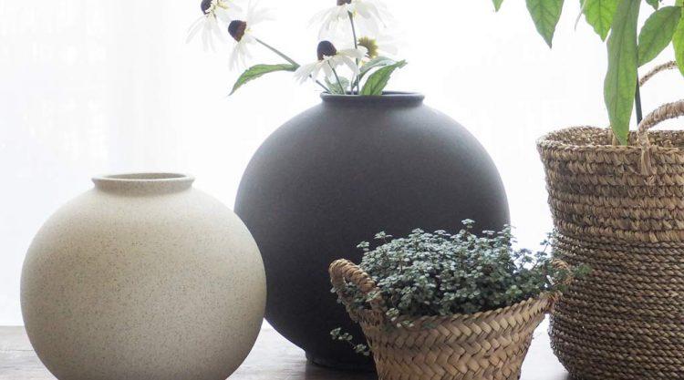 vases lily